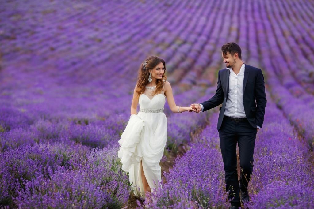 Молодожены лавандовая свадьба