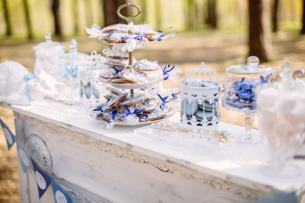 свадьба в бело синем цвете