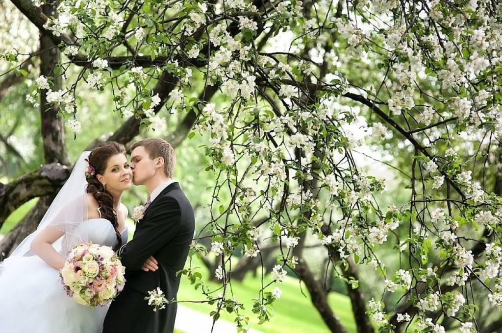 наличии идеи для свадебной фотосессии весной фото статье куликовская